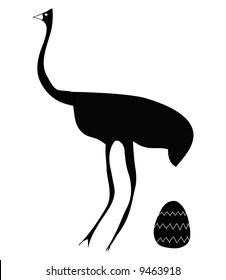 large bird - large egg