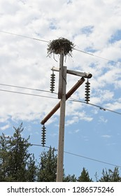 A large birdnest on a power pole