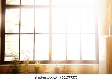 Large black metal-plastic window on the wall. Kitchen window sill with flowers in pots. From the window the sun shines brightly. Spring or summer morning. The window shines the sunlight