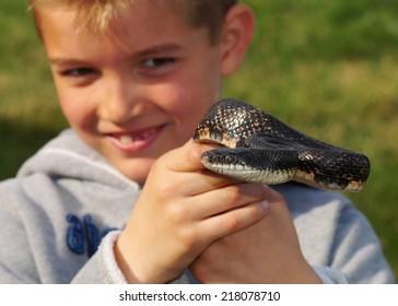 Large black snake held by a boy - Black Rat Snake, Pantherophis or Elaphe obsoleta (focus centered on snake)