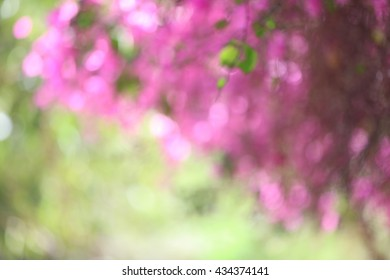 A large blurred pink and green foliage background backdrop.