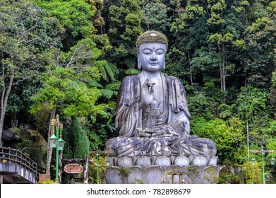 A large Buddha statue sits on a mountain edge in the Genting Highlands in Pahang, Malaysia, amongst tropical jungle. The Chin Swee Caves Temple is situated in the most scenic site of Genting Highlands