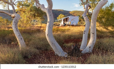 Large caravan and four wheel drive vehicle camped and framed by the white trunks of a Snappy Gum tree in the Karijini National Park, Australia in the late afternoon