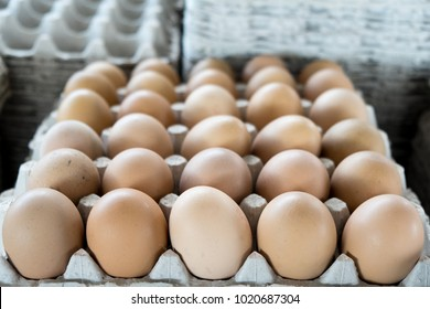Large carton of 30 fresh organic brown eggs at a local farmer's market in Montreal. Rows of fresh brown eggs from the farm. Buy local concept. Stacks of fresh eggs for sale at outdoor market.
