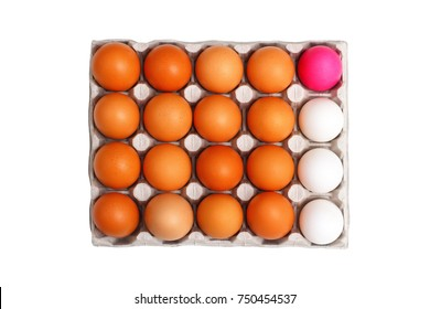 a large carton of eggs