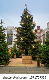 Large Christmas tree with decoration of shining Moravian stars and light chains on the traditional advent market in the old town of Luebeck in Germany