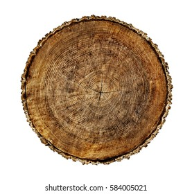 Large circular dark piece of wood cross section with tree ring texture pattern and cracks isolated on white background.