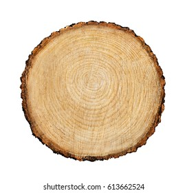 Large circular piece of wood cross section with tree ring texture pattern and cracks isolated on white background. Natural flat wooden surface.