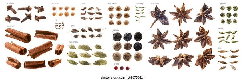 Large collection of seasonings and spices on a white background