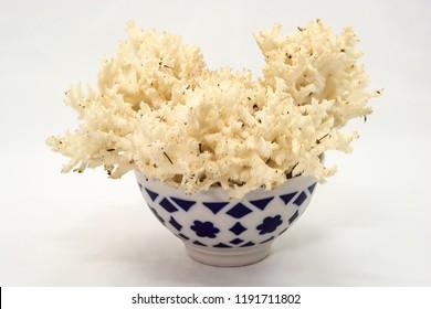 Large coral mushroom in large ceramic bowl on white background.