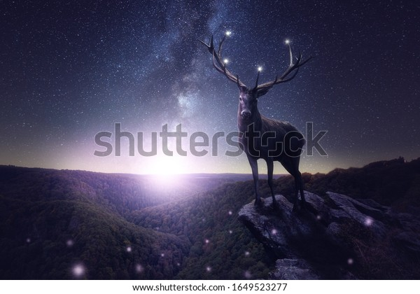 A large deer stands on a rocky outcrop in a stars night. Moonlight and milky way