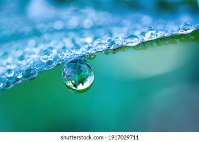 Large drop water reflects environment. Nature spring photography — raindrops on plant leaf. Background image in turquoise and green tones with bokeh. - Shutterstock ID 1917029711