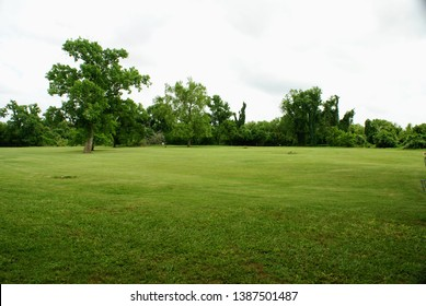 Large Empty Field of Grass