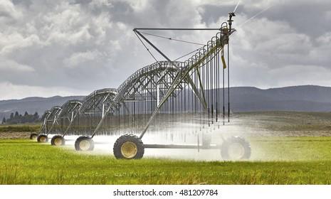 Large farm irrigation sprinkler system watering grass crop