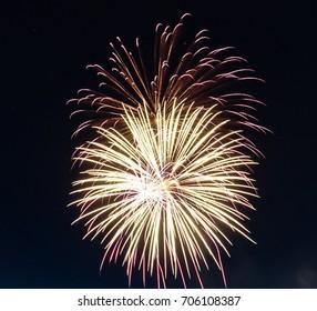 Large Fireworks bursting in the night sky