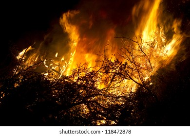 Large flames of forest fire