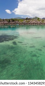 A large flock of fish in turquoise transparent netsea water and green mountains on the horizon, Seychelles