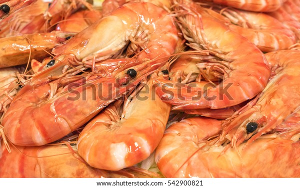 Large, freshly cooked orange prawns.