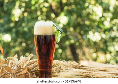 large glass of dark beer, malt, hops, barley ears standing on an old wooden table dyeing, natural background