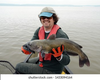 A large gray brown channel catfish fish being held horizontally by a long haired man in a baseball cap and gloves with a net in a canoe on a foggy river