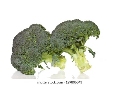 large green broccoli on a white background