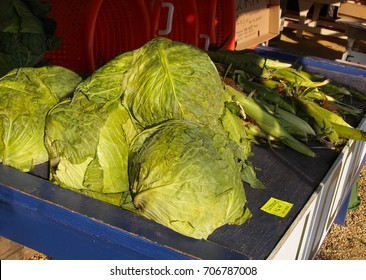 Large green heads of cabbage for sale at a roadside fresh produce stand with local corn in the background.