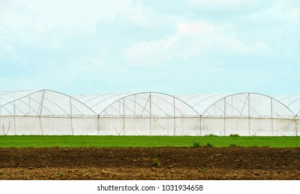 Large greenhouse for cultivation