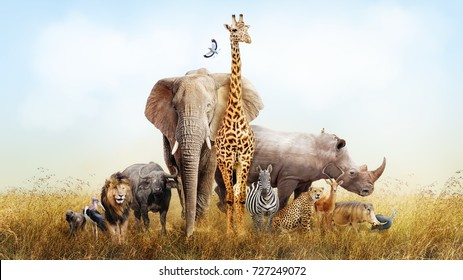 Large group of African safari animals composited together in a scene of the grasslands of Kenya.