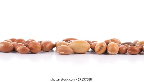 Large group of argan nuts on a white background. Plenty of copy space. Horizontal studio shot.