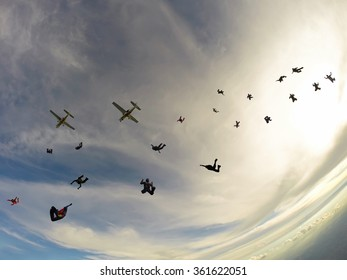 A large group of parachutists jump from two airplanes afternoon, in a bright sky.