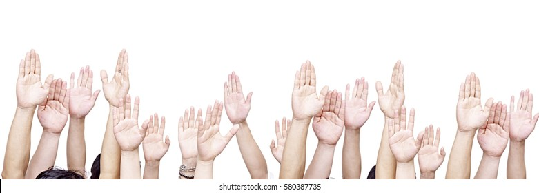 large group of people raising their hands, isolated on white background.