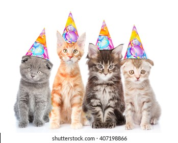 Large Group Of Small Cats With Birthday Hats Isolated On White Background