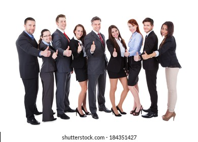 Large group of successful business people showing thumbs up sign. Isolated on white