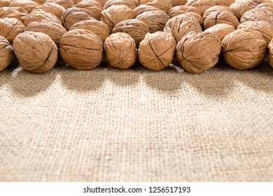 Large group of wallnut fruit over jute background with space for your text.