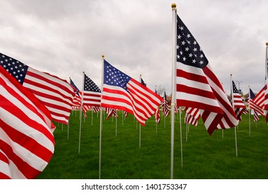 A large grouping of US Flags to honor Memorial Day on an overcast cloudy day with one flag brighter than the ones surrounding it.