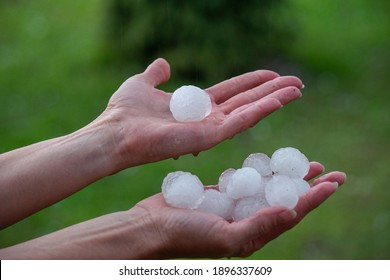 Large hailstones on women's palms in spring