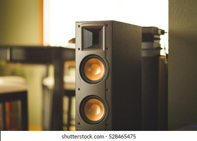 Large home theater speaker in home setting