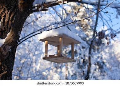 Large horizontal photo. Winter time. Winter landscape. Russia. Bird feeder in the winter snowy forest. Photo from bottom to top. Feeder on the background of white trees and blue sky.