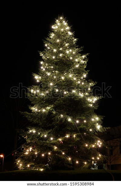 Large, illuminated Christmas tree in the dark