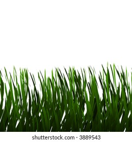 a large illustration of nice green grass on a white background