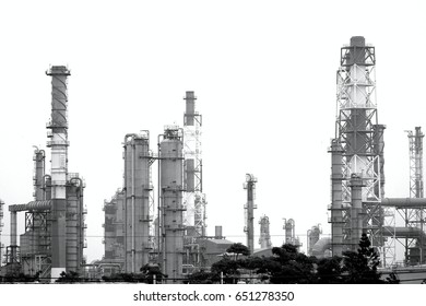 Large industrial plant for the petrochemical industry