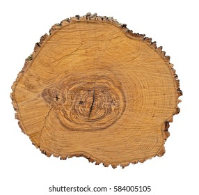 Large irregular piece of wood cross section with tree ring texture pattern and cracks isolated on white background. Detailed organic surface from nature.