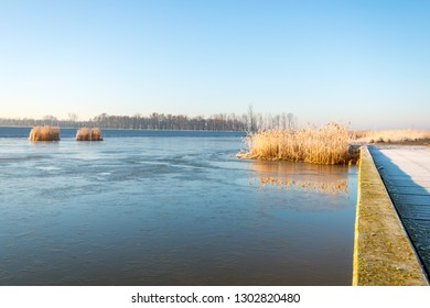 Large lake in the Dutch National Park Biesbosch, North Brabant. A thin layer of ice is over most of the water surface. The dry reed is reflected in the non-frozen water.