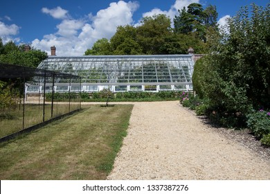 Large lean-to greenhouse in an English country garden. View of specimum shrubs and plants being grown in a white glasshouse on a summers day.