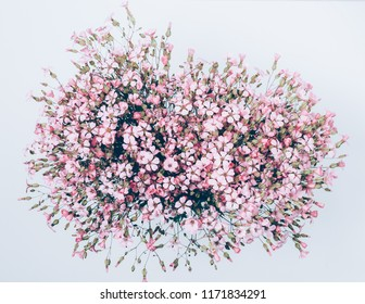 Large lush bouquet of numerous pink gypsophilia flowers on white background, top view. Festive flat lay floral composition.