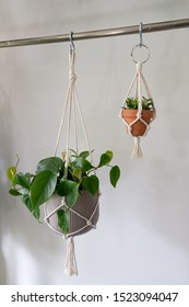A large macrame plant hanger hanging in a ceramic pot beside a mini macrame plant hanger for a car rear view mirror. Both are made out of cotton.