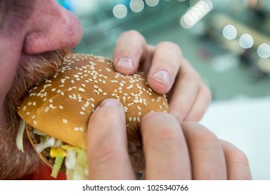 A large man with a red beard and mustache eats hamburger and french fries in a fast food restaurant. Big guy with a sandwich and potato chips. An elderly hipster is eating unhealthy fatty foods