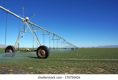 Large, mobile sprayer irrigates the fields with a low evaporation watering system