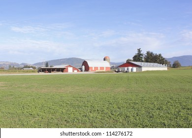 A large, modern, high production dairy farm in Canada/Modern Canadian Dairy Farm/A large, modern, high production dairy farm in Canada.