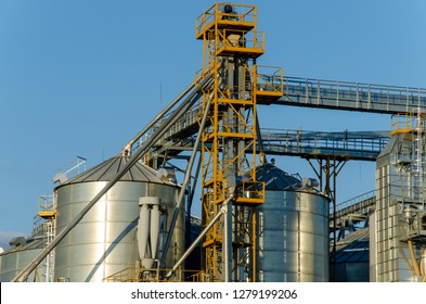 A large modern plant for the storage and processing of grain crops. view of the granary on a sunny day against the blue sky. End of harvest season.